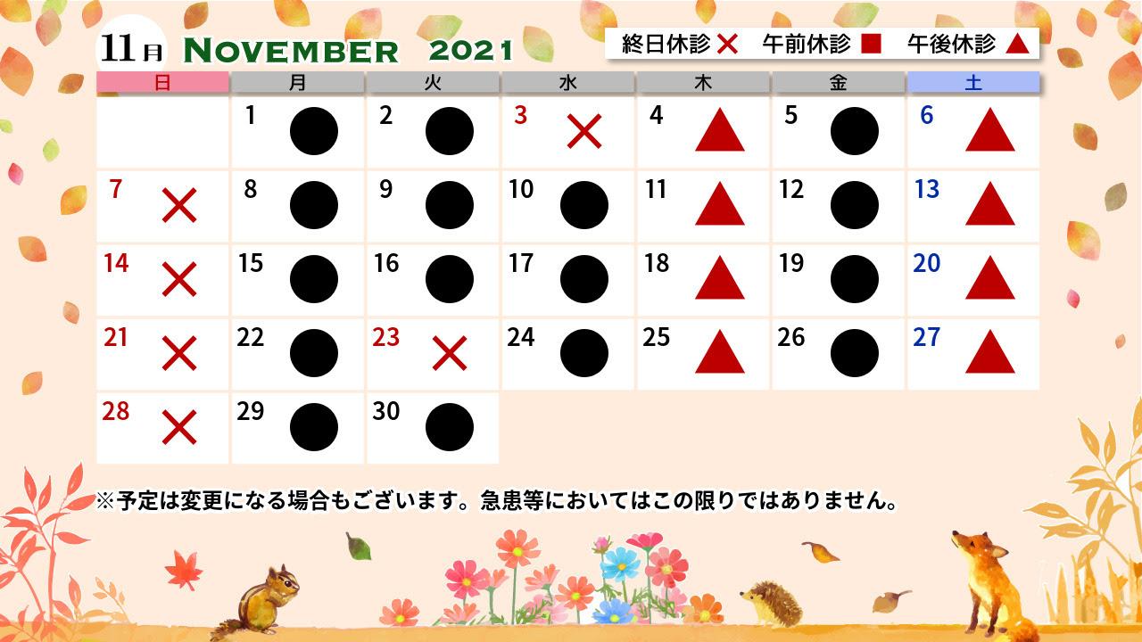 11月診療カレンダー